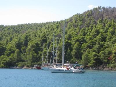 Πάνορμος, ένας μοναδικός κόλπος στη Σκόπελο - Sail in Greek Waters